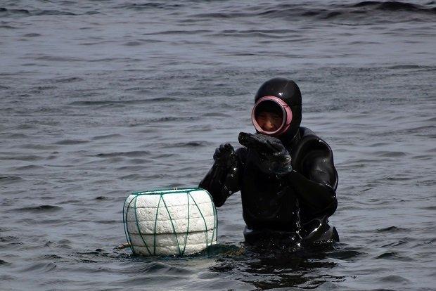 Women divers in South Korea