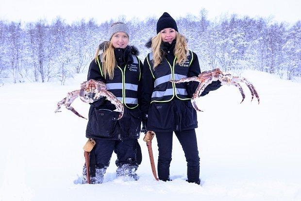 King crab safari in Kirkenes, Norway