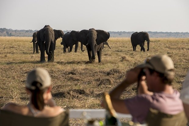You will typically go on game drives twice a day. Image by: &Beyond