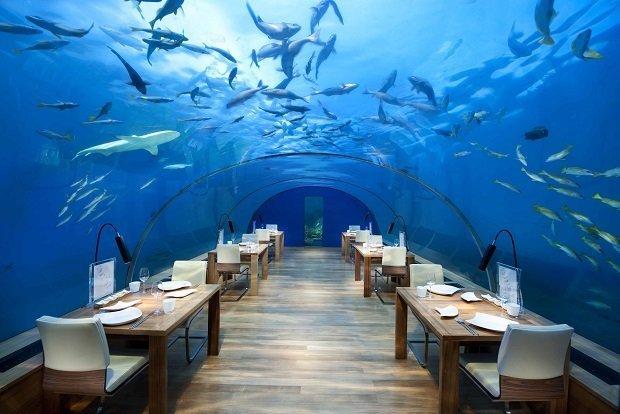 Ithaa Undersea Restaurant, Maldives