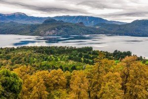 Lake View, Road Of The Seven Lakes, Argentina